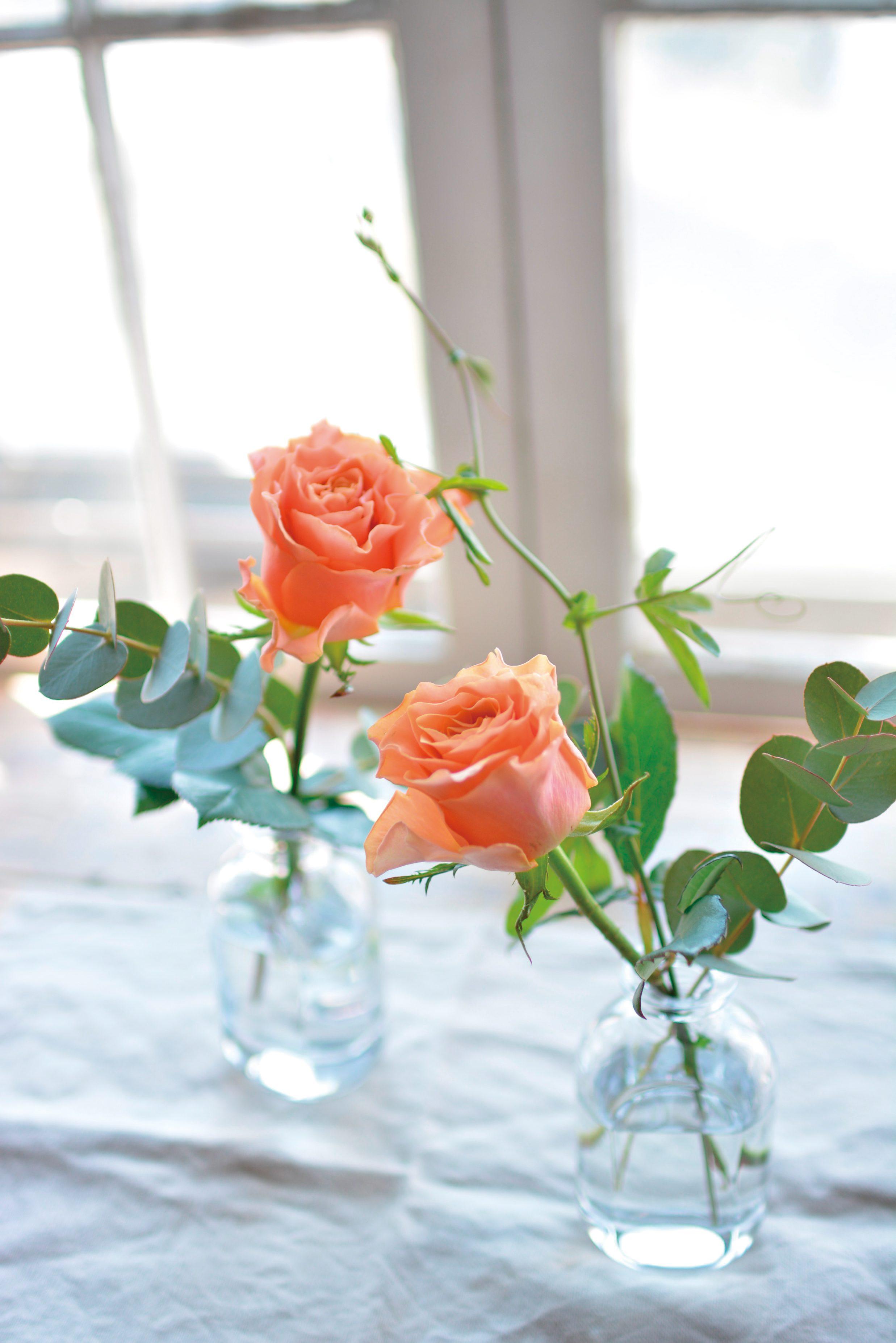 魔法の花瓶定期便お試しプラン(毎週)